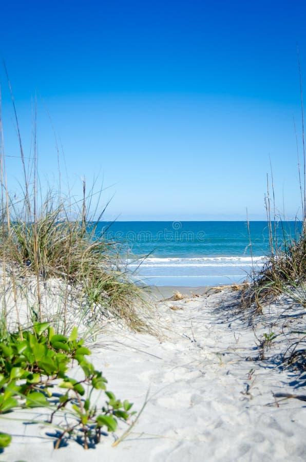 向海滩的道路 免版税库存图片