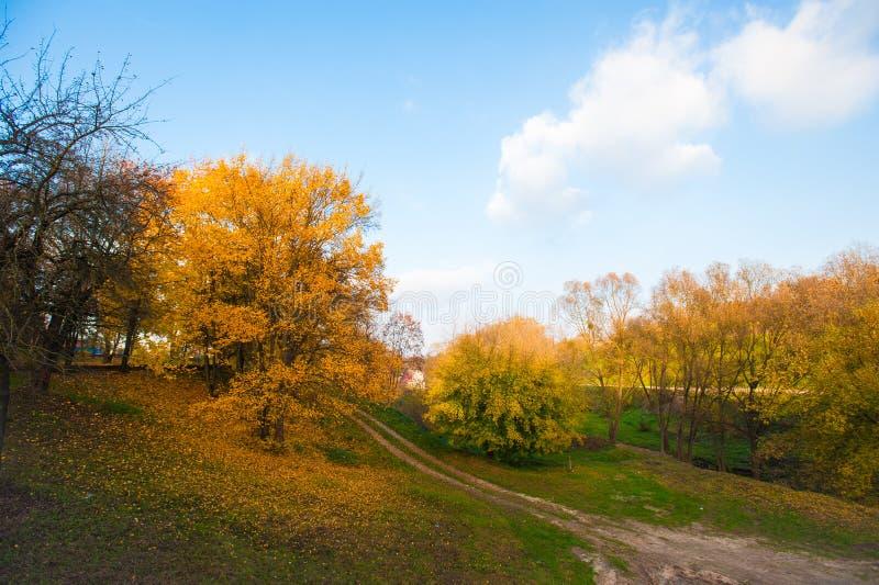 向秋天森林秋天森林的路有乡下公路的 与树,农村路,橙色和红色叶子的五颜六色的风景, 免版税库存图片