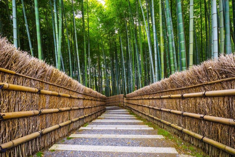 向竹森林,京都,日本的道路 免版税库存图片