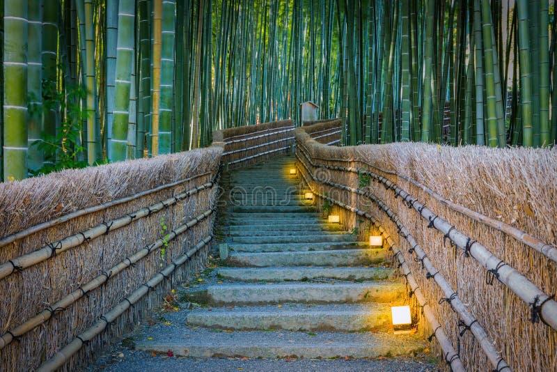 向竹森林, Arashiyama,京都的道路 图库摄影