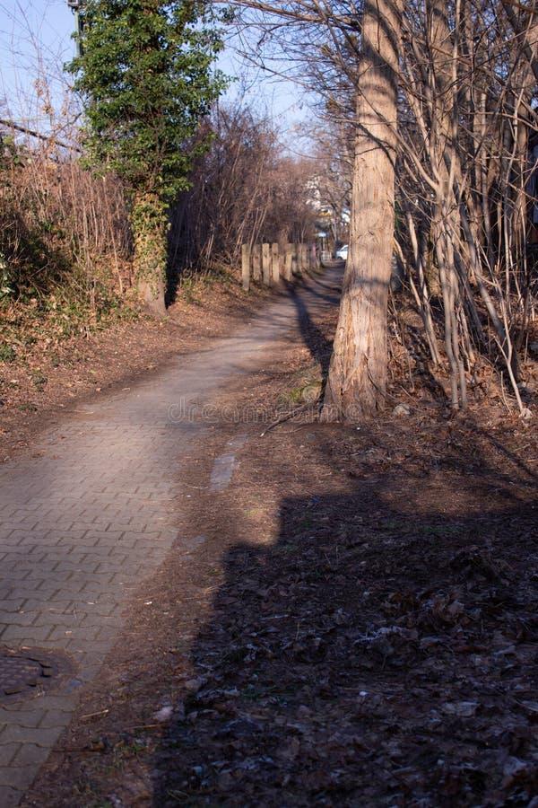 向街道的路在德国 免版税图库摄影