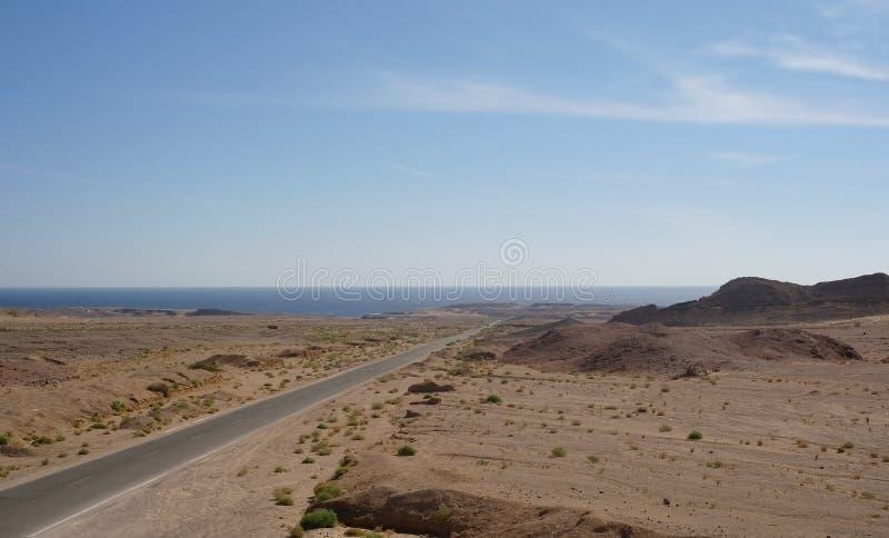 向西奈沙漠的路。 库存照片