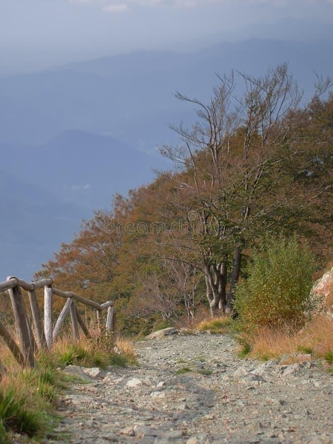 向遥远的小山、旅途或者旅行概念的道路,垂直 库存照片