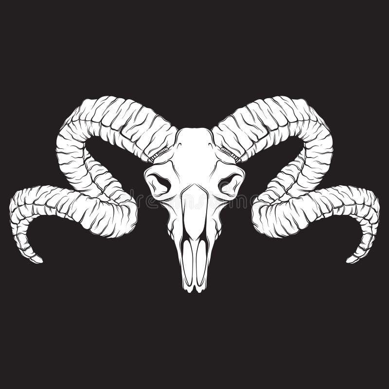 向量手拉的例证 与公羊的头骨的艺术品 方术,宗教,灵性,秘密主义,纹身