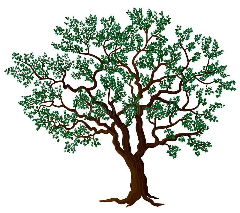 向量结构树 库存例证