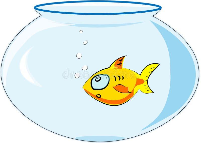 向量 漂浮在被隔绝的背景的一个水族馆的黄色鱼 库存例证