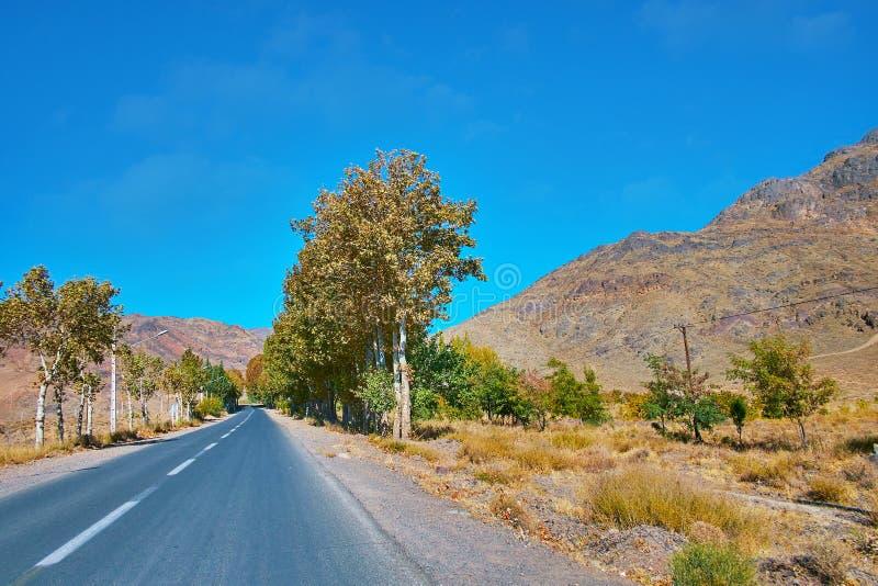 向阿卜亚内赫村庄,伊朗的路 库存图片