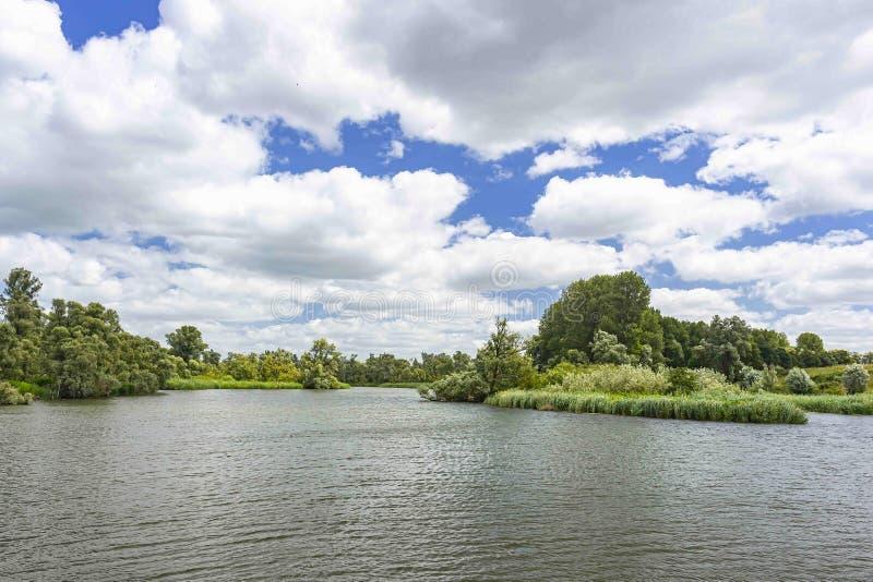 含水国立公园在一美丽的天空蔚蓝与白色云彩,荷兰下的Biesbosch 免版税库存照片