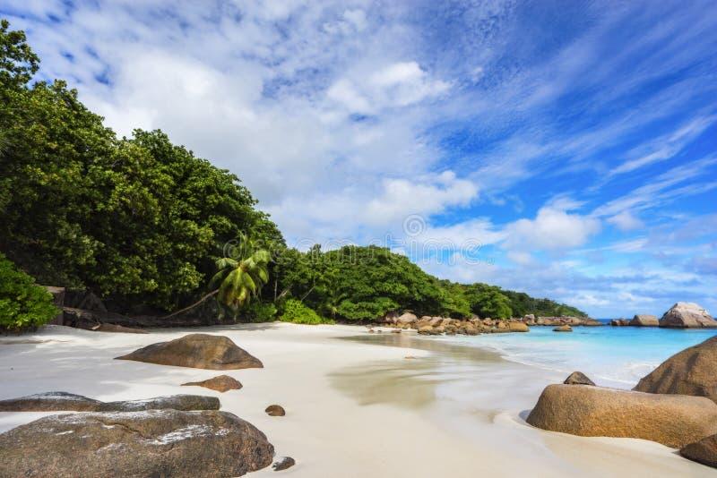 含沙海滩的海洋 白色沙子,绿松石水,在热带的棕榈树 免版税库存图片