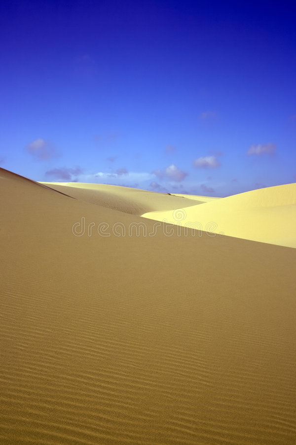 含沙的沙漠 免版税图库摄影