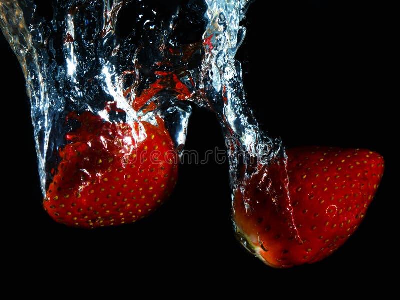 含水草莓II 库存图片