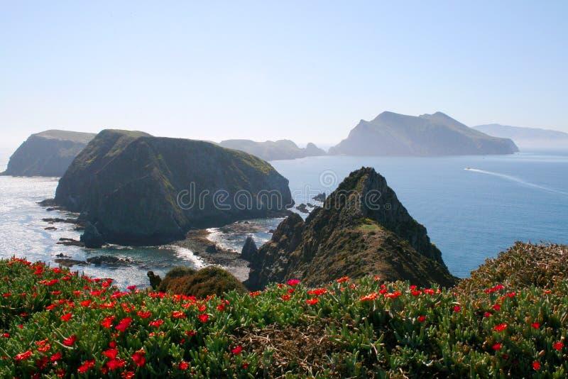 启发点, Anacapa海岛 图库摄影