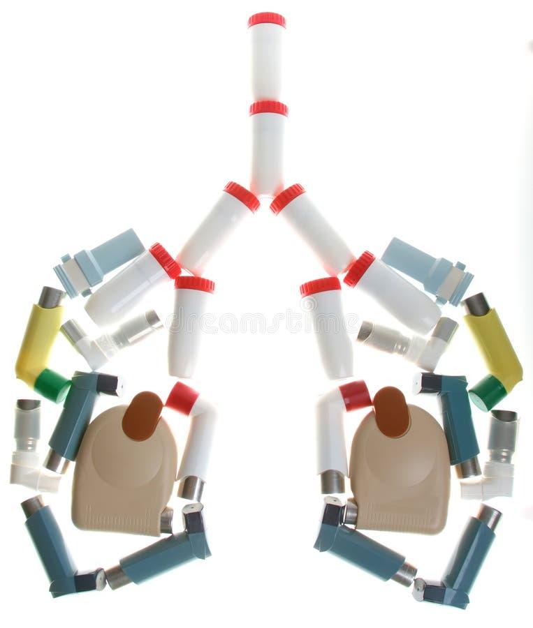 吸入器肺 免版税库存照片