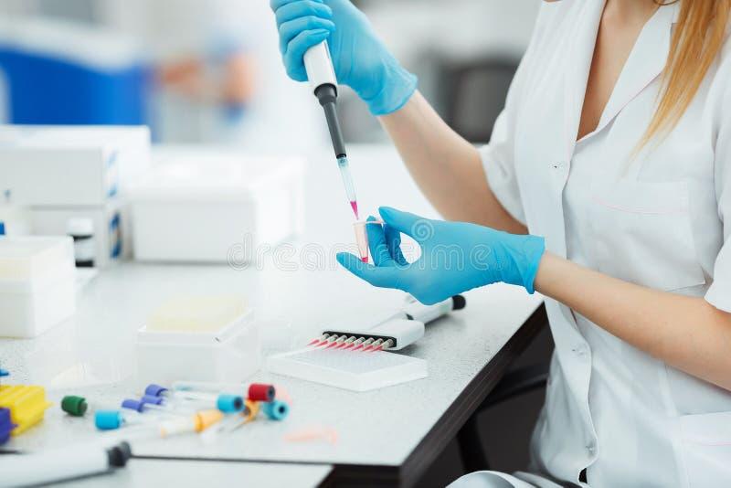 吸取投下在试管的一个样品 分析血液的实验员在实验室 脱氧核糖核酸分析 免版税库存照片