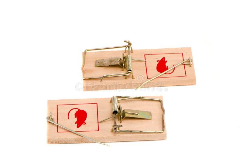 吸引抓住干酪杀害鼠标捕鼠器对陷井 库存图片