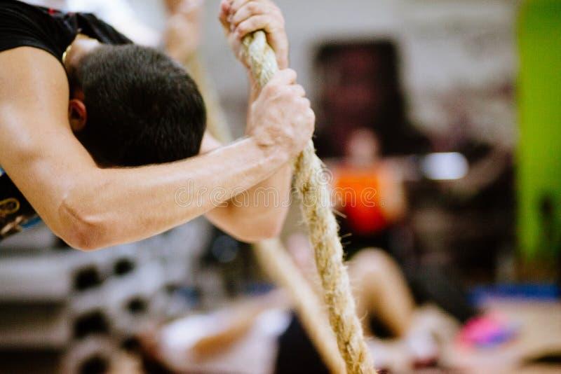 吸收锻炼weightloss训练 库存图片