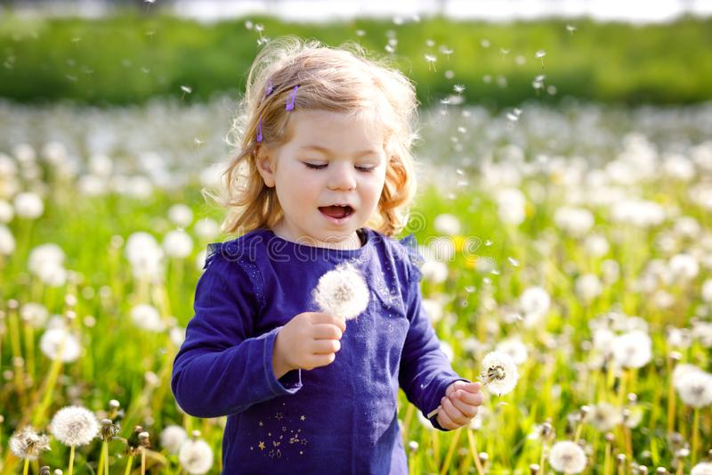 吹在自然的一朵蒲公英花的可爱的逗人喜爱的矮小的女婴在夏天 愉快健康美丽 库存图片