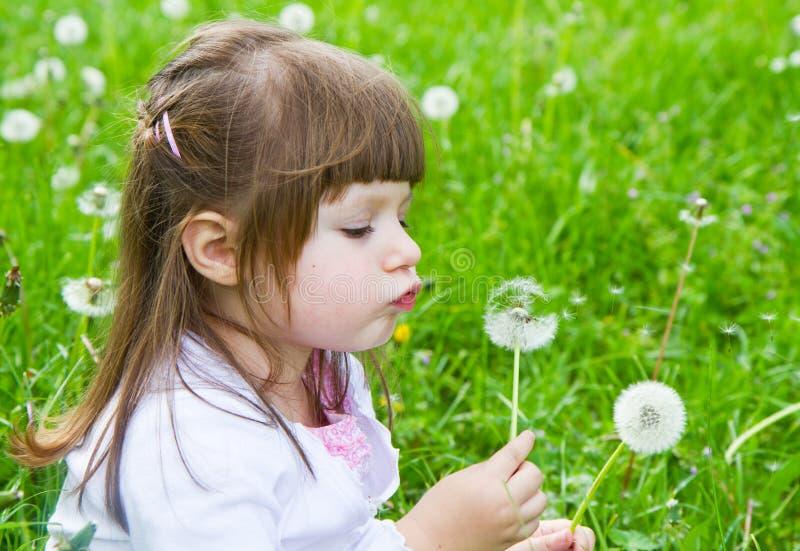 吹蒲公英的可爱的矮小的白肤金发的小女孩 免版税库存照片