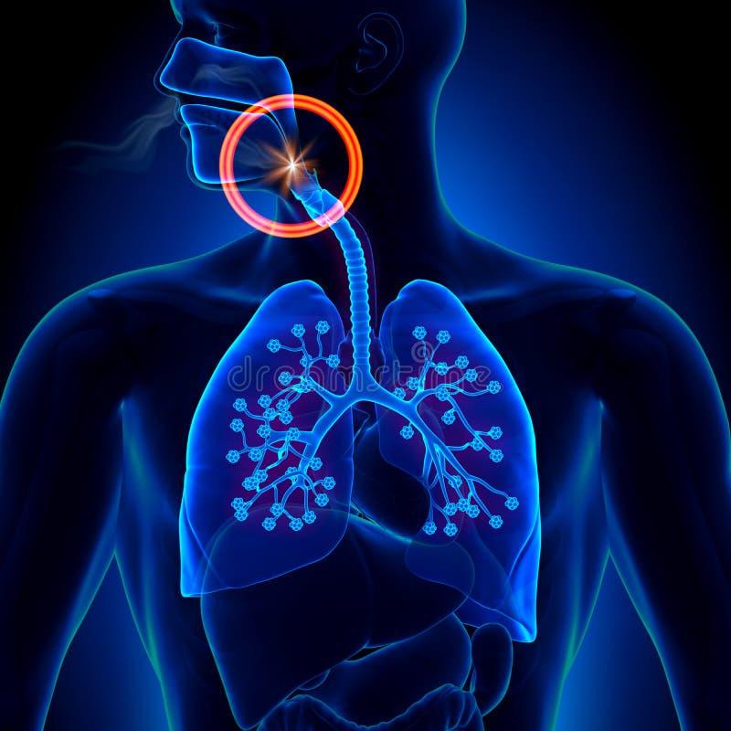 呼吸暂停-阻碍睡眠停吸 库存例证