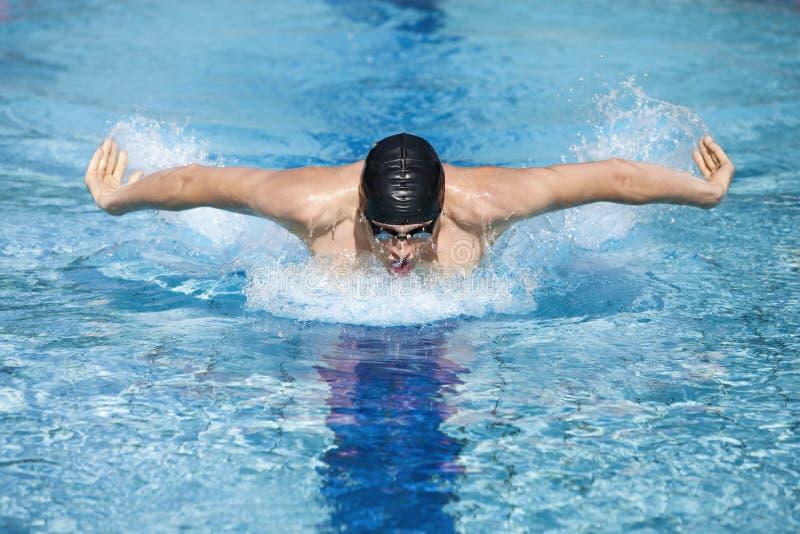 呼吸的盖帽的动态游泳者执行Bu 免版税库存照片