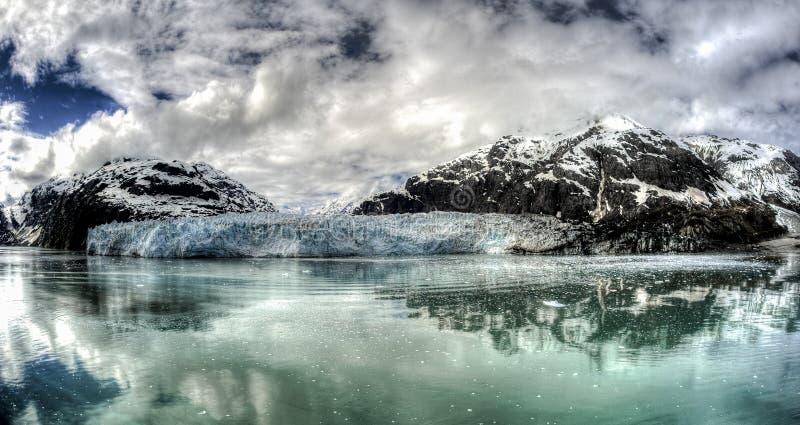 延命菊冰川在阿拉斯加` s冰河海湾国家公园 免版税库存图片