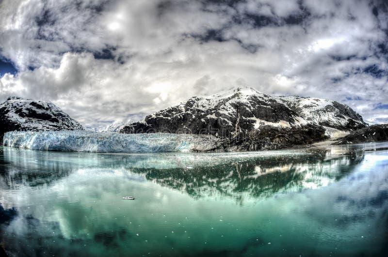 延命菊冰川在阿拉斯加` s冰河海湾国家公园 库存照片