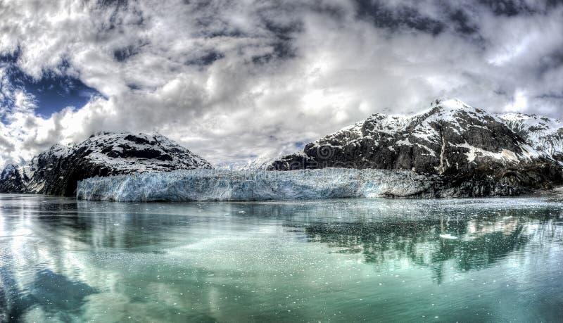 延命菊冰川在阿拉斯加` s冰河海湾国家公园 图库摄影