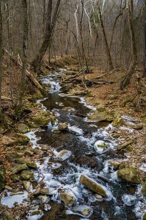 咆哮跑的小河- 2的冬天视图 免版税图库摄影