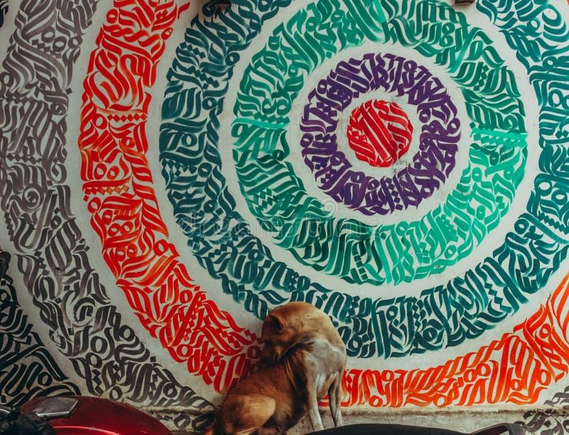 和倾斜坐有美好的样式的五颜六色的墙壁的街道狗 图库摄影