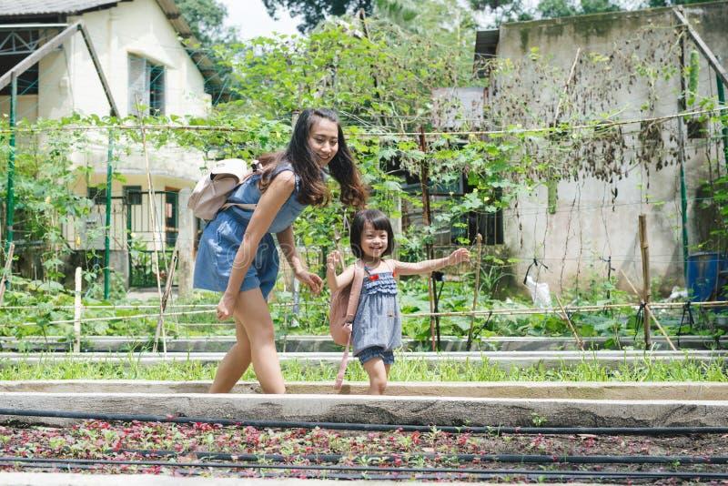 和女儿参与一起从事园艺母亲 免版税库存图片