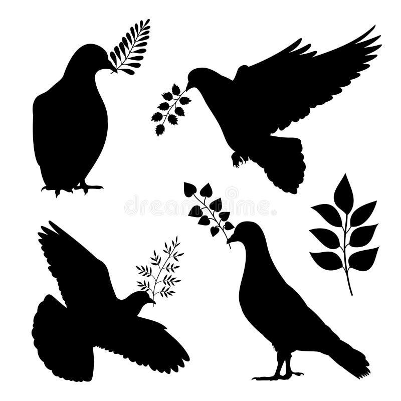 和平传染媒介silhouetes鸠  与被隔绝的分支的鸽子 向量例证