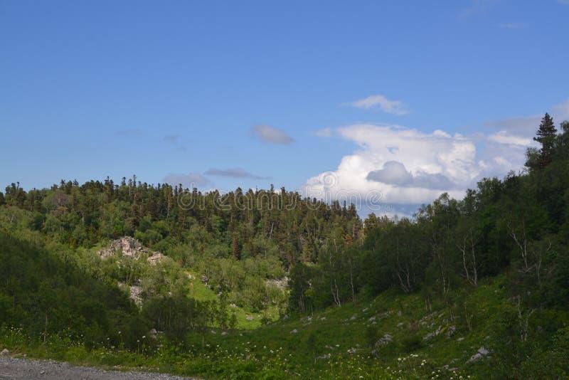 和平和山 沈默山 库存照片
