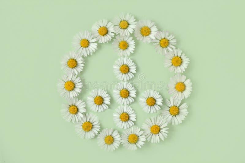 和平标志由雏菊花制成 免版税库存图片