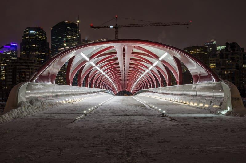 和平桥梁和卡尔加里地平线在冬天夜 免版税图库摄影