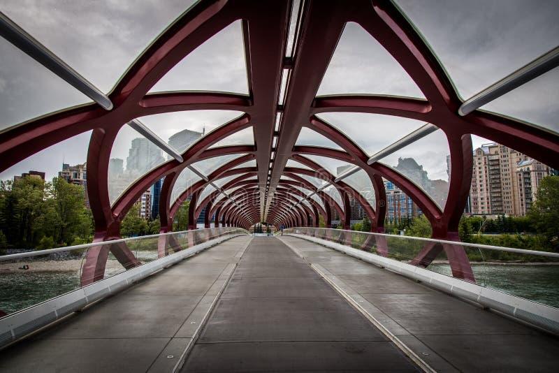 和平桥梁在卡尔加里,亚伯大,加拿大 图库摄影