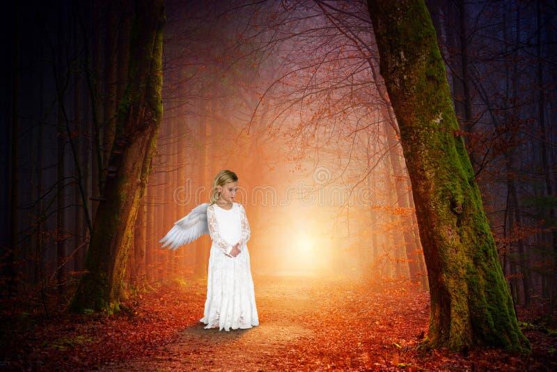 和平,自然,爱,天使,女孩 库存图片