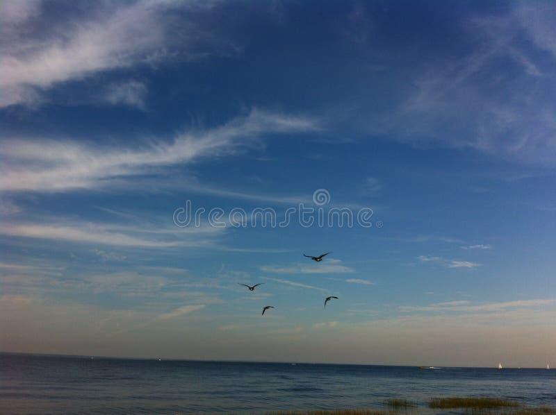 和平:天空和海洋 免版税库存照片