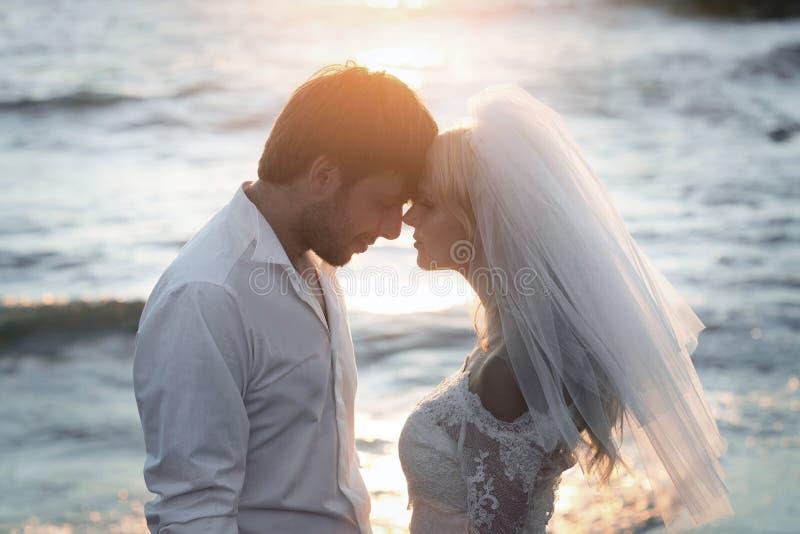 年轻和愉快的新婚佳偶特写镜头画象  免版税库存照片