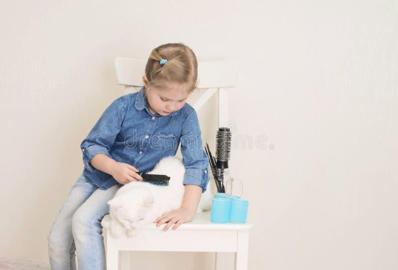 和白猫一起玩宠物沙龙或理发师的小女孩 小孩梳着宠物,试着用彩色的毛发卷发器 库存图片