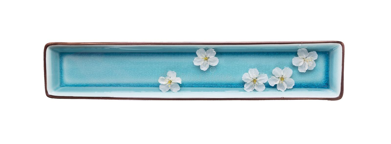 水和白花,温泉,被隔绝 免版税库存图片