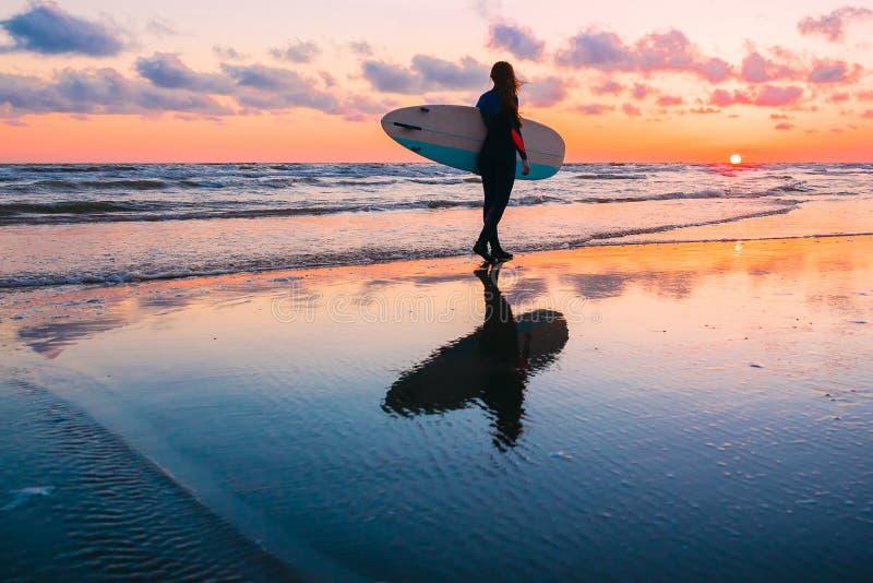 年轻和运动的女孩去冲浪 保温潜水服和日落的美丽的妇女在海洋 库存图片
