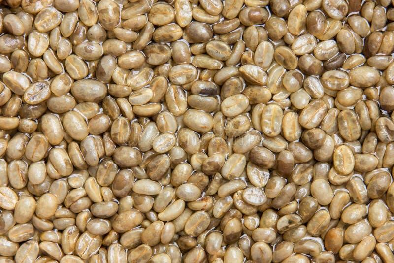 咖啡不是种子烘烤 免版税图库摄影