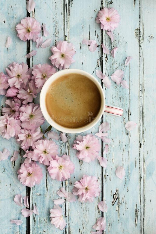 咖啡和樱花 免版税库存图片