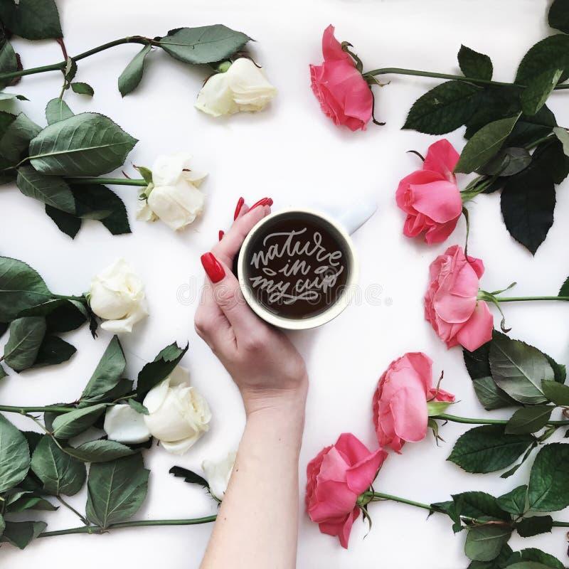 咖啡和玫瑰 图库摄影