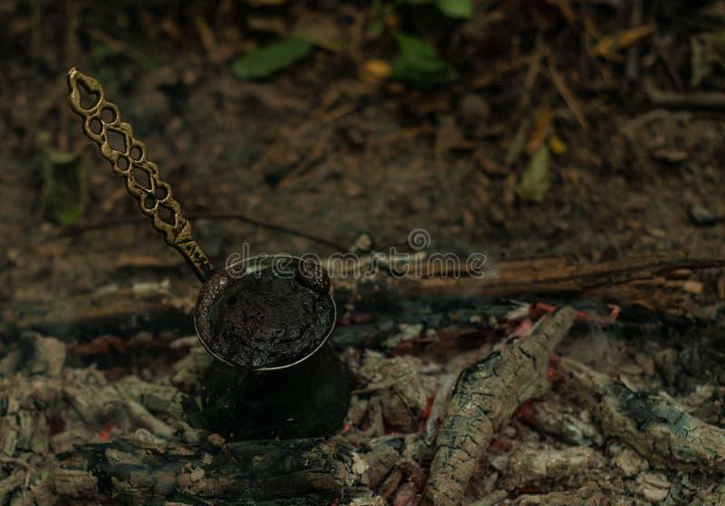 咖啡在森林 免版税库存照片