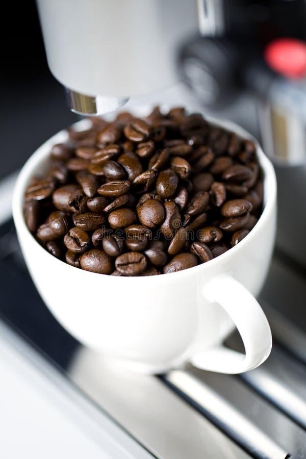 咖啡壶 库存照片