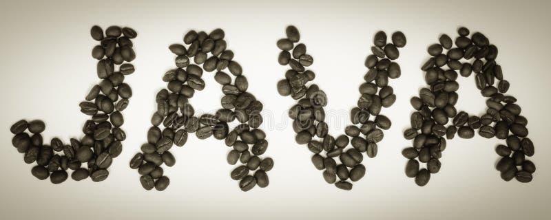 咖啡定期的JAVA豆 免版税库存照片