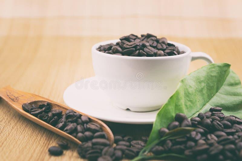 咖啡杯用咖啡豆和咖啡叶子 免版税库存照片