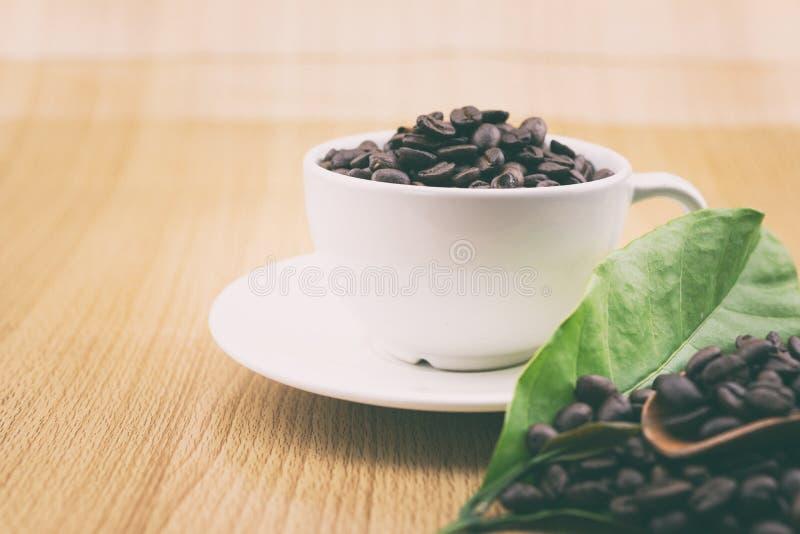 咖啡杯用咖啡豆和咖啡叶子 库存图片