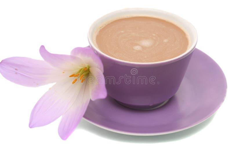 咖啡杯花查出的丁香 免版税图库摄影